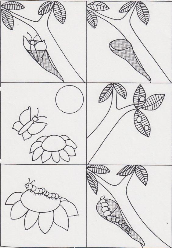 rups tot vlinder thema rupsen en vlinders
