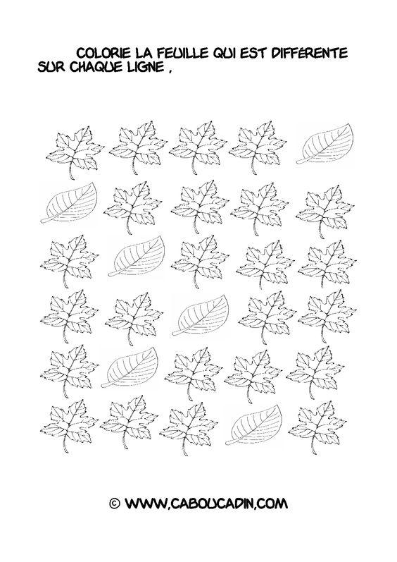 Trouver l 39 intrus toutes les fiches ici fiche - Activite automne maternelle ...