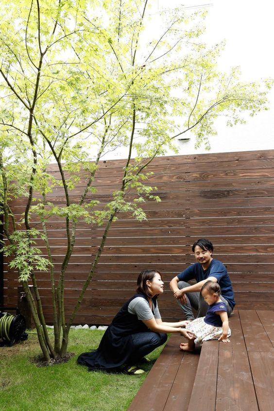 シンボルツリーは1本立ち 株立ち 庭 デザイン Diy 庭 モダンガーデン