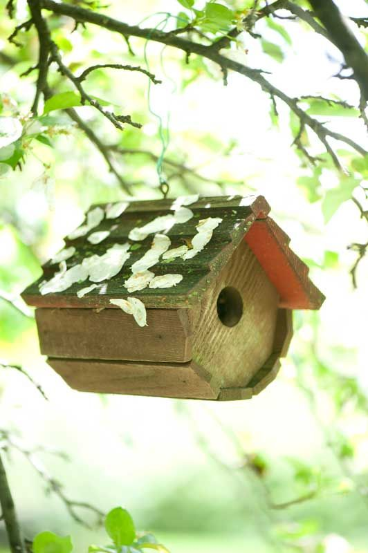 Wren House With Apple Blossom Covered Roof Birdhouses