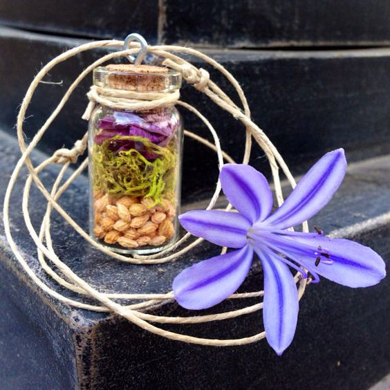 Tropical Terrarium Necklace - filled with purple orchid petals, wolf moss, and papaya seeds
