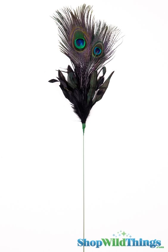 Peacock Feathers are symbolic and are often associated with nobility, glory, wisdom, kindness, patience, openness, and good fortune. Peacocks are als