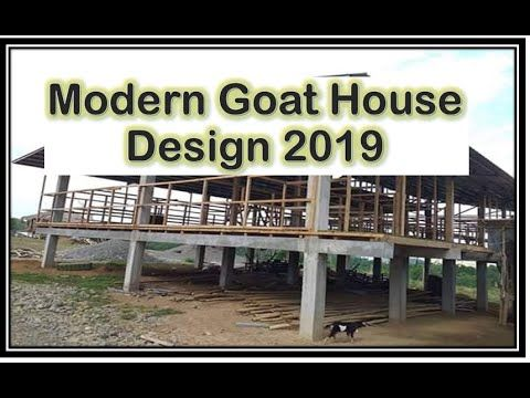 Modern Goat House Design 2019 In The Philippines Youtube Goat