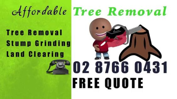 Tree Removal Sydney | Call 02 8766 0431| Tree Services In North