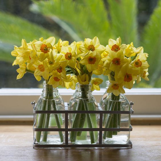 Daffodils are in bloom from March through to the end of April, so are often associated with Easter.