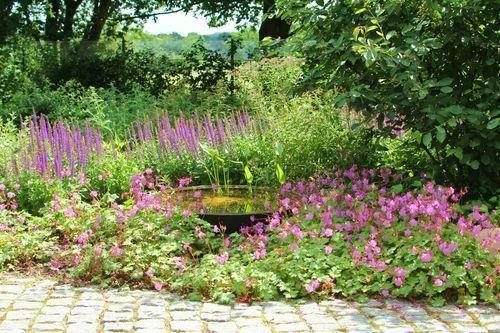 Pflegeleichter Garten Ohne Rasen Fur Chronisch Kranke Pflegeleichter Garten Garten Pflanzen Garten