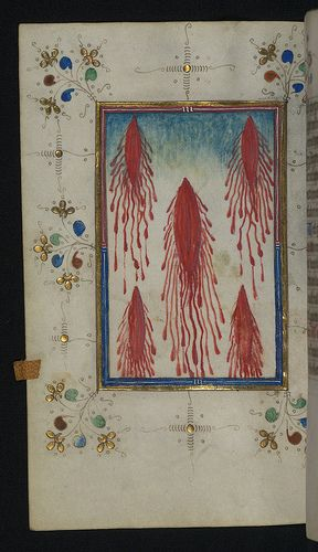 Illuminated Manuscript, Book of Hours, Five Wounds of Christ, Walters Art Museum Ms. W.165, fol. 110v | Flickr - Photo Sharing!