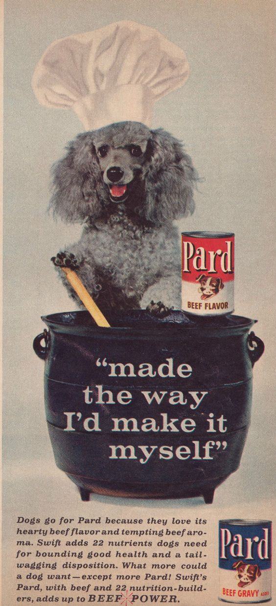 Why did they think the name Pard was a good name for dog food ?