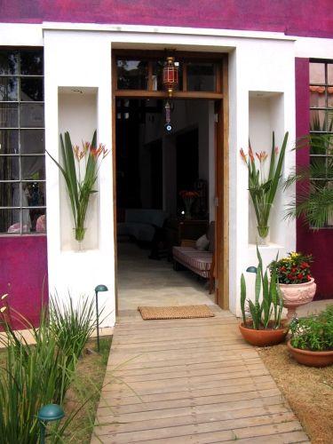 planta para decorar casa - Pesquisa Google