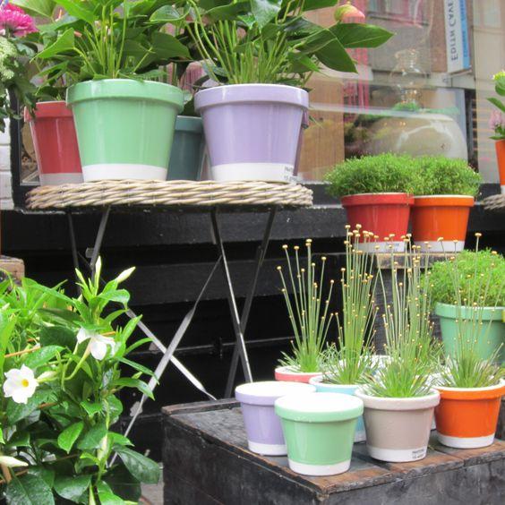 Pantone pot de fleurs