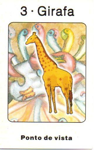 Girafa - Yin - Ponto de Vista