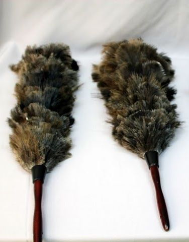 How to Care for Your Extreme Duster.  If you don't have one; here's the link.   http://shop.flylady.net/pages/FlyShop_XDuster.asp