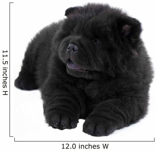 Puppy White Chow Chow Wall Decal Wallmonkeys Com 25 Most Amazing