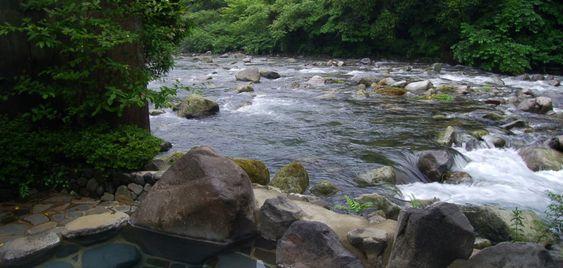 温泉の紹介|箱根湯本の山の宿 雉子亭豊栄荘