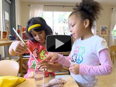 This video from Harvard University's Center for the Developing Child presents the scientific findings behind executive function and its role in learning and in life.