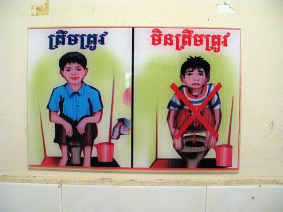 The right and wrong way to use a sit-down toilet