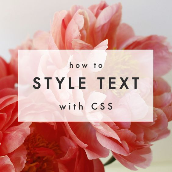 Learn how to style your text with CSS! via The Blog Market