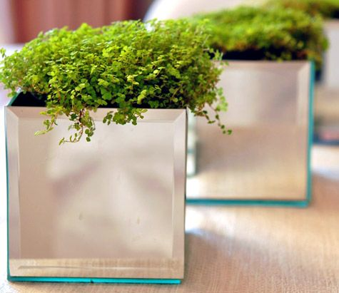 mirrored tile planters...