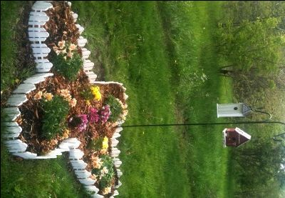 Butterfly shaped flower bed gardening and plants for Flower bed shapes designs