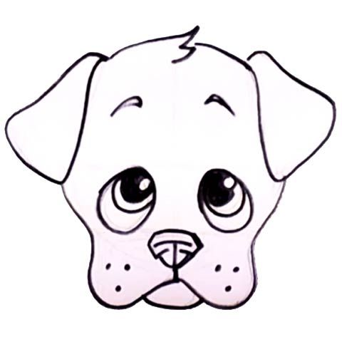Learn How To Draw A Cute Puppy Face At DrawingTeacherscom
