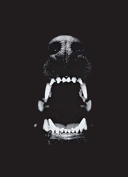 att-ic:  'helldog' by me