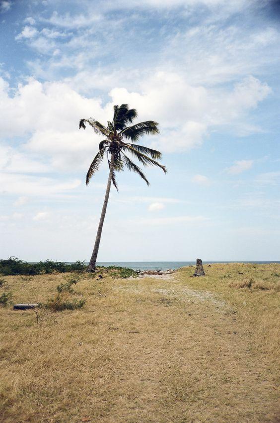 Popoyo, Nicaragua by @FosterHunting