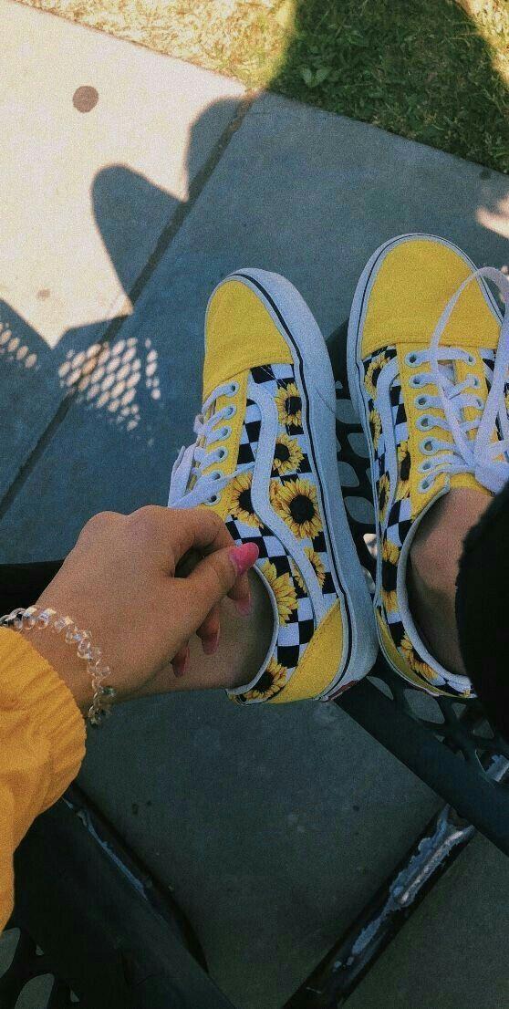 scarpe e scarpe vans