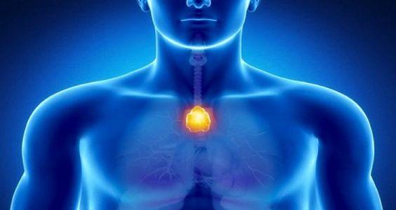 Le point du bonheur dans votre corps – Neutralisez l'énergie négative et renforcez votre système immunitaire   NewsMAG