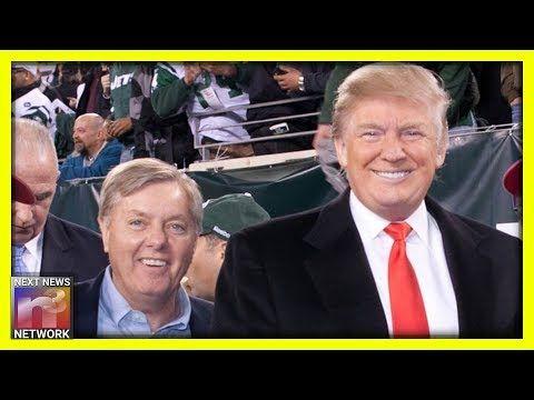Mr Lyon Lindsey Graham Gives Trump Hilarious Advice Regard Hilarious Feud Video Channel