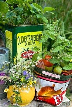 Plantering i förpackning