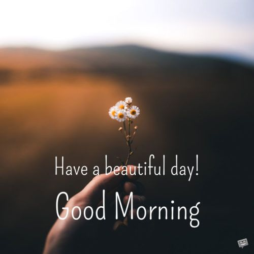 Fresh Inspirational Good Morning Quotes For The Day Get On The Right Track Part 10 Good Morning Quotes Good Morning Inspirational Quotes Good Morning Quotes For Him