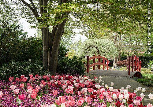 Dehner Blumenpark Parks Garten Infopoint