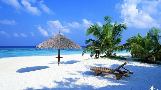 16 Amazing Beach Wallpapers You Can Download for Free: Tropical Beach Wallpaper by Beach Backgrounds