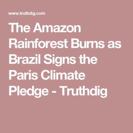 The Amazon Rainforest Burns as Brazil Signs the Paris Climate Pledge - Truthdig