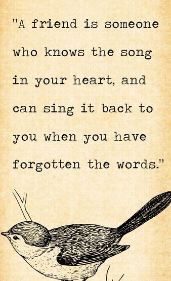 A friend is someone who knows the song in your heart, and can sing it back to you when you have forgotten the words.