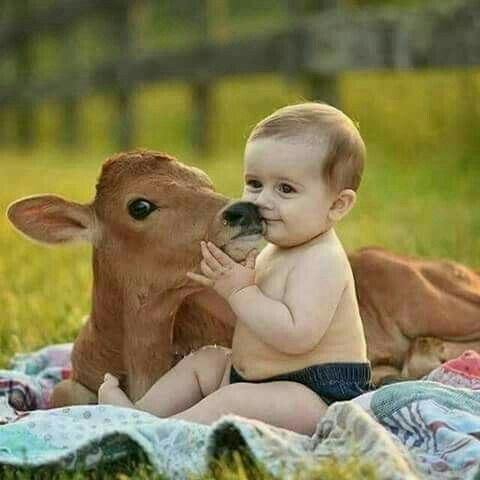 A Baby Kissing A Fawn Kinder Tiere Susse Tiere Tierbabys