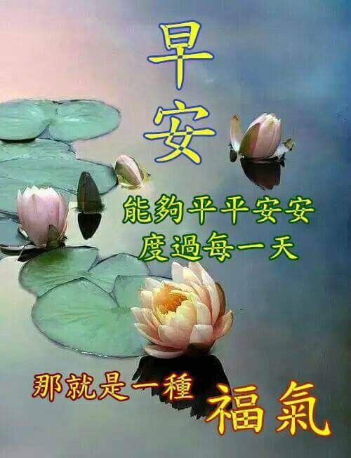 Pin By May On Good Morning Wishes Chinese Morning Greeting Good Morning Greetings Good Morning Wishes