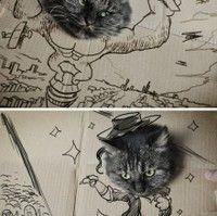 storia di un gatto in cartone