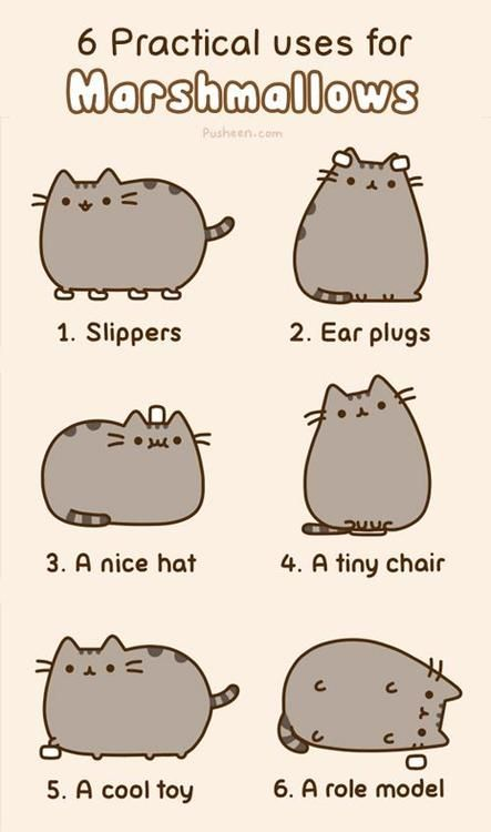 """Pusheen the Cat's """"6 Practical Uses for Marshmallows"""""""