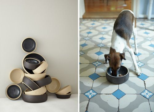 Cloud7 Dog Bowls, Beds, and Accessories | Dog Milk