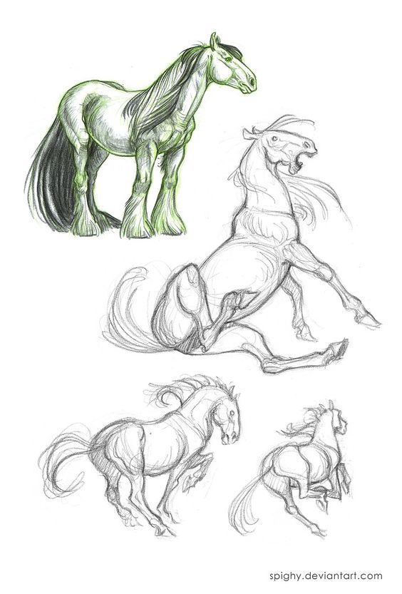 Wendling and Whitlatch horses_style study by Spighy