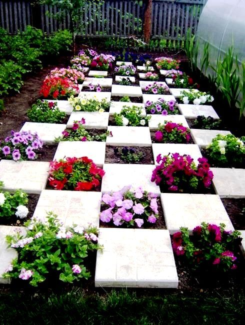 Petunias Ideas Vines In 2020 Diy Backyard Landscaping Garden Design Garden Projects