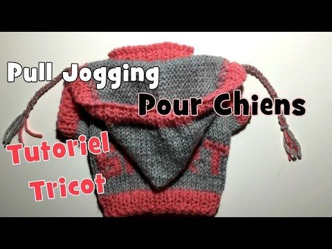 Tutoriel Tricot Pull Jogging Pour Chiens Diy Youtube Dog Sweater Crochet Pattern Crochet Dog Sweater Sweater Crochet Pattern