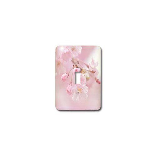 Amazon.com: Amy Dyckovsky Roadside Collection - Kwanza Pink Cherry Blossoms - Light Switch Covers - single toggle switch: Home Improvement