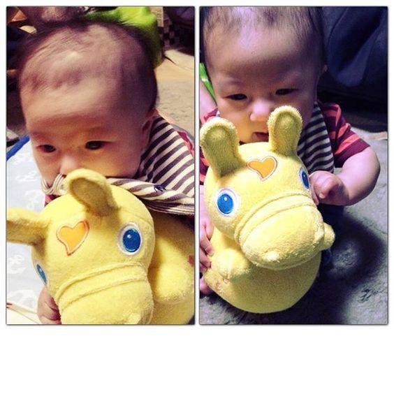 Instagram media sawa_aso - 新しいお友達。  #3ヶ月 #3月生まれ #ロディ