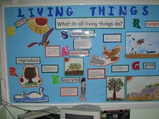 "I can modify this idea with my ""characteristics of living things"" unit."