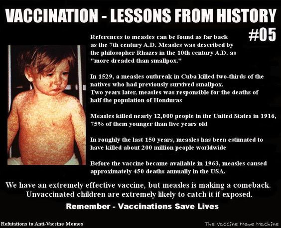 lessons from history measles credit refutations to anti vaccine memes vaccines save lives. Black Bedroom Furniture Sets. Home Design Ideas