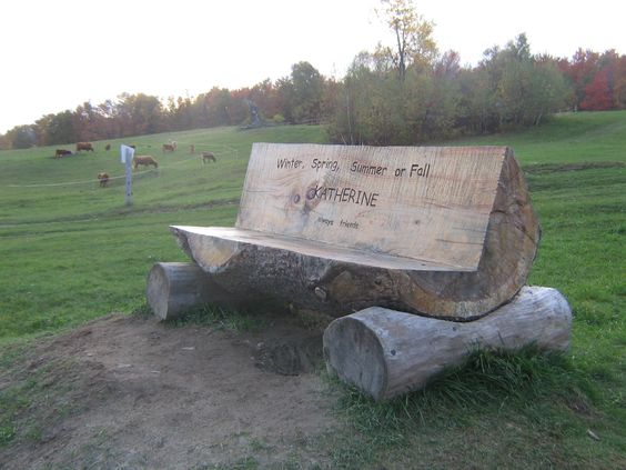 the real wooden bench