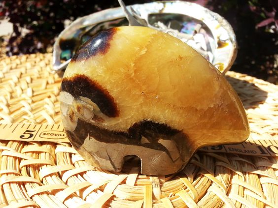 Septarian (Dragonstone) Zuni Bear ~ 1 Reiki infused Zuni Bear approximately 3.5 x 2.5 x 1 inches (003) by Kiliamma on Etsy