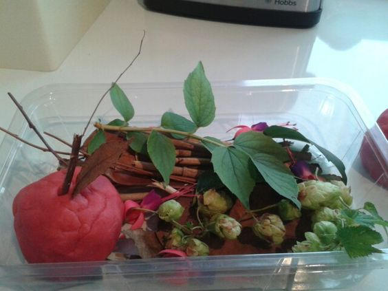 Apple scented play dough and  bits collected from the garden. Big hit with 2 & 3 year olds